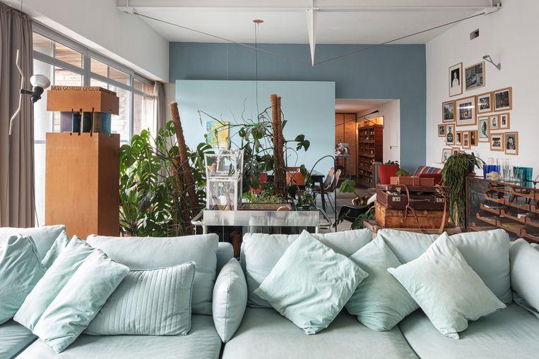 De planten vormen een natuurlijke scheiding tussen de zit- en eethoek. De lichtblauwe wand op de achtergrond is de enige nieuwe muur in de woning. Erachter bevindt zich de badkamer. Beeld Tim van de Velde