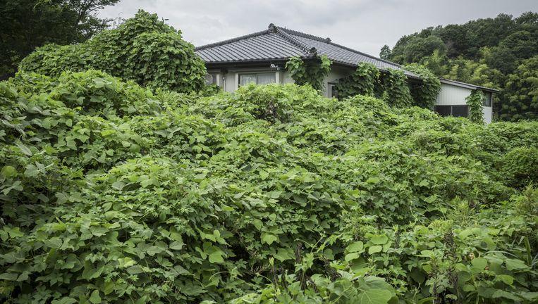 Bij de ramp in Fukushima hebben ruim 150.000 Japanners het gebied verlaten. Of ze zich ooit weer thuis kunnen vestigen is uiterst onzeker. Beeld Guillaume Bression - Carlos Ayesta