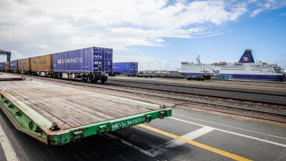 Opnieuw 12 transmigranten onderschept in Zeebrugse haven: totaal van september ligt op 64