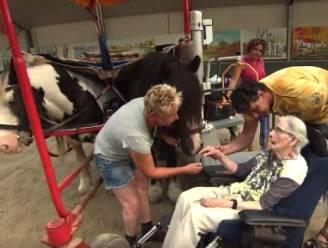 Mevrouw Jacobs (87) heeft ziekte van Parkinson en wil nog één keer paardrijden. Het filmpje dat iedereen ontroert