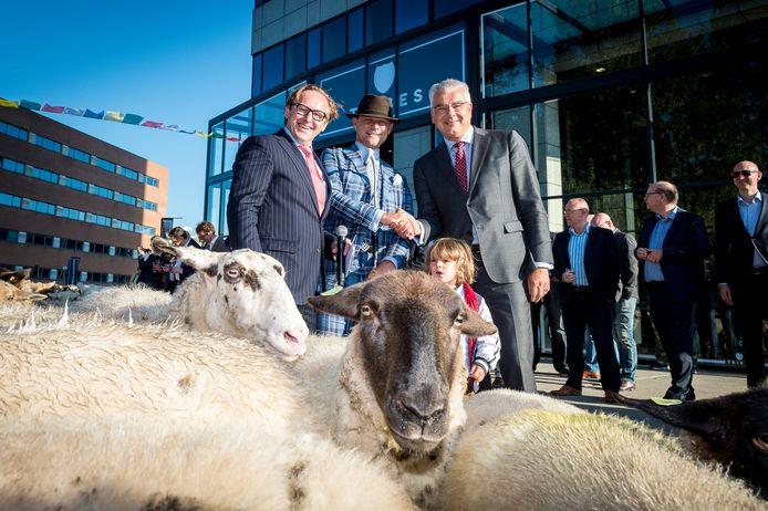 Voor de opening van de Tribes vestiging bij het Rotterdamse Rivium nam baas Schaepman 250 schapen mee.