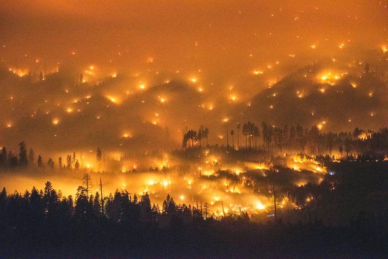 Bosbranden in het Yosemite National Park, Californië. Beeld EPA