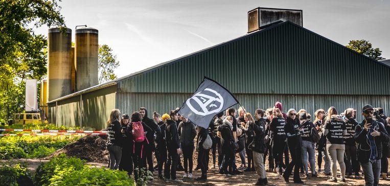 Dierenactivisten tijdens de bezetting van een boerderij. Beeld Hollandse Hoogte / Rob Engelaar