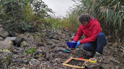Actiegroepen zoeken piepkleine plastic deeltjes langs de Schelde