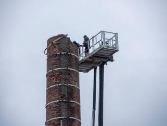 Oude fabrieksschouw Gamma wordt steen voor steen afgebroken, skyline van Overschelde verandert