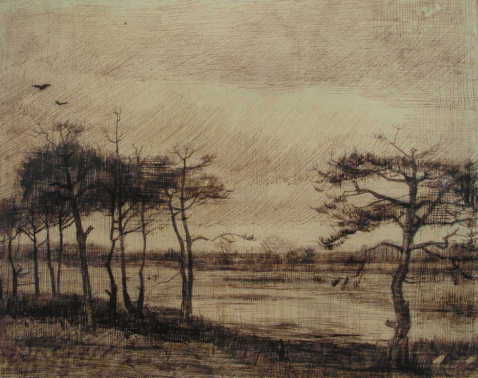 Tekende Vincent Van Gogh Dit Ven In Stiphout Helmond Adnl