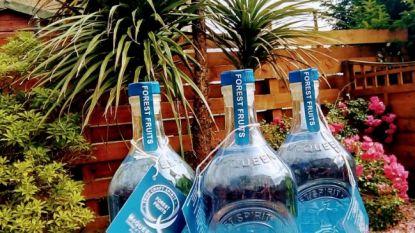 Schotse brouwerij brengt gin op de markt die van kleur verandert