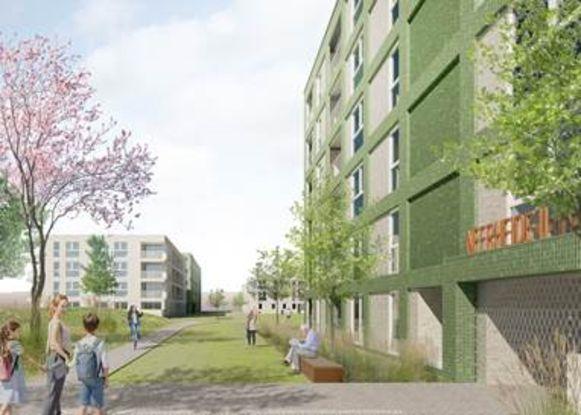 """""""In de Neerheide werken we aan plannen om de renovatie van de wijk daar te gebruiken om de oppervlakte van het Pennepoelpark quasi te verdubbelen"""", zegt Orlians."""