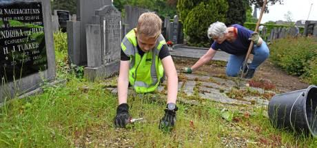 Wierdense begraafplaats weer toonbaar na NL Doet: 'We wilden iets nuttigs doen'