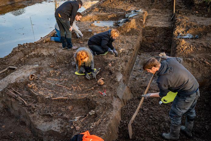 Archeologen zijn bezig met de opgraving van de 71 skeletten in Vianen.