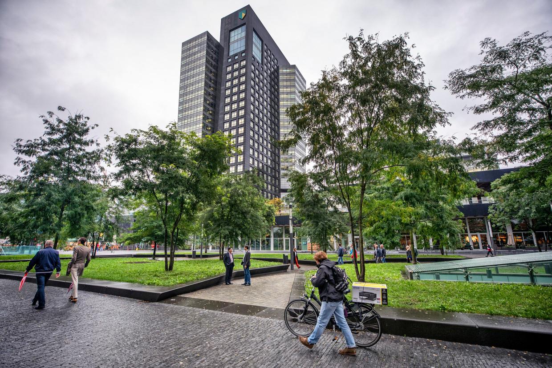 Het milieuvriendelijke 'circulaire plantsoen' van ABN Amro op de Zuidas in Amsterdam.  Beeld Raymond Rutting / de Volkskrant