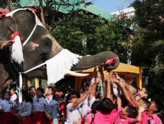 Geen rendieren maar olifanten van de kerstman bezorgen pakjes aan Thaise schoolkinderen