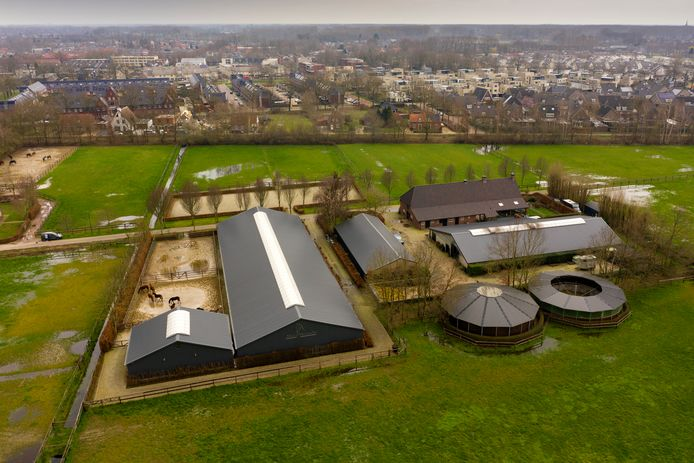 Paardenbedrijf Vermulst in Schijndel met op de achtergrond de wijk Hulzebraak.