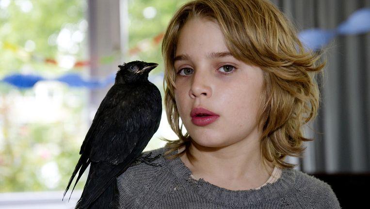 Naast de hoofdrolvoor Jojo, gespeeld door de debuterende 10-jarige Rick Lens speelt een kauw een belangrijke rol in Kauwboy. © ANP Beeld