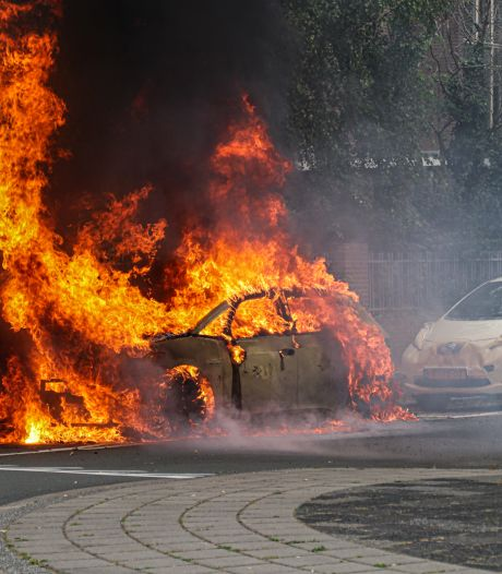 Mariska kon zoontje net op tijd redden uit brandende elektrische auto: 'Hoorde ploffen en gesis'