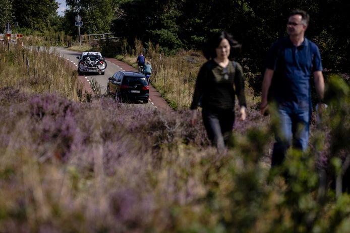 De verkeersdrukte hindert vaak het plezier van de wandelaars op de Posbank.