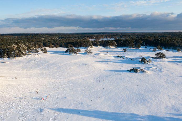 Het Hulshorsterzand in Hulshorst is momenteel bedekt door een laag sneeuw.