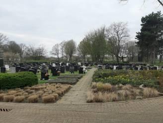 Werken aan begraafplaats in aantocht: gemeente vraagt om beplanting en ornamenten voor en rond graven te verwijderen