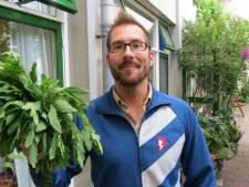 Ruil tuintegels om voor gratis planten tegen hitte-eilanden