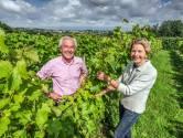 """Voormalige kinderarts en vrouw maken ook rode wijn op domein Vidaigne: """"Wij werden pioniers door verkeerde bestelling"""""""