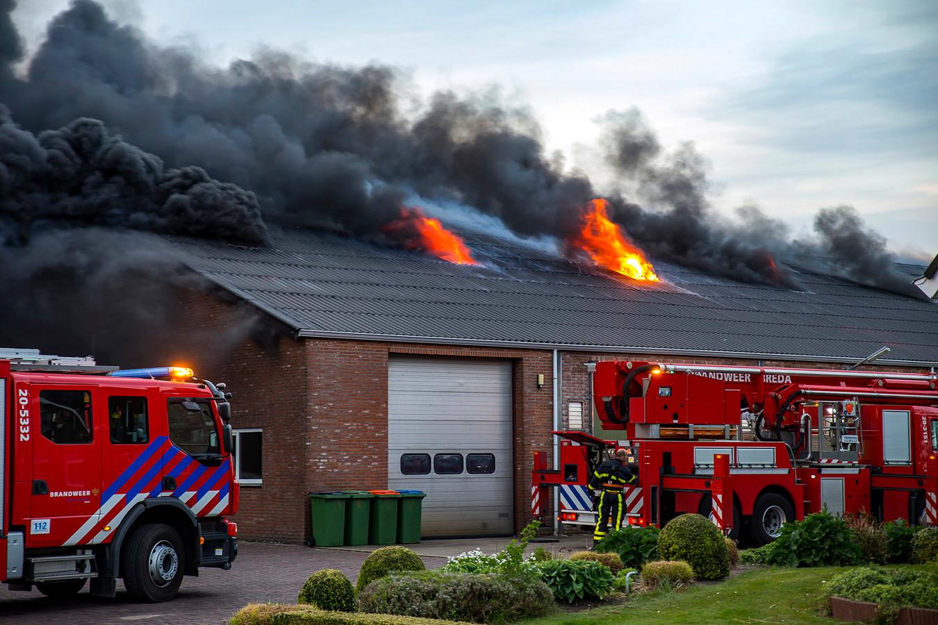 Grote uitslaande brand bij champignonkwekerij in Bavel