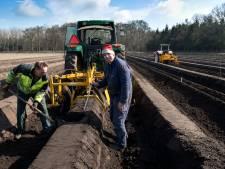 Geen vroege asperge-oogst in Bilthoven, maar de kweker is er klaar voor