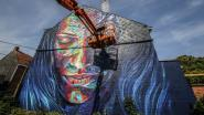 Wandelen langs strafste street art