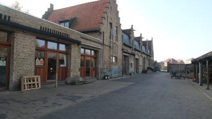 Steinerschool Koningsdale houdt opendeurdag