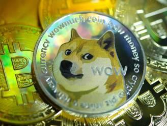 Cryptomunt Dogecoin stijgt in één dag met 80 procent in waarde. Wat is er aan de hand?
