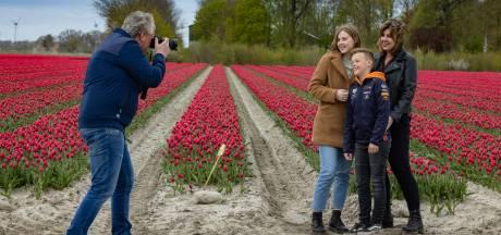 Tulpen trekken tienduizenden bezoekers in Flevoland, ondanks corona: 'Mensen willen er graag even uit'