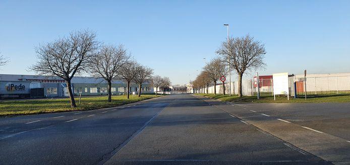 De Biezeweg in Kwatrecht.