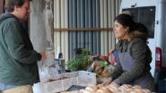 Boerenmarkt Kraakvers strijkt neer in Kontich-Kazerne