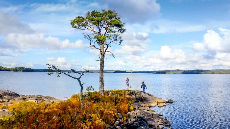Camping Coppens is vanaf maandag te zien op VTM: wie kijkt, kan meegenieten van de prachtige panorama's. Beeld VTM