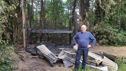 """Boomhut van 20.000 euro gaat amper drie jaar na opening in vlammen op: """"Brandstichting valt niet uit te sluiten"""""""