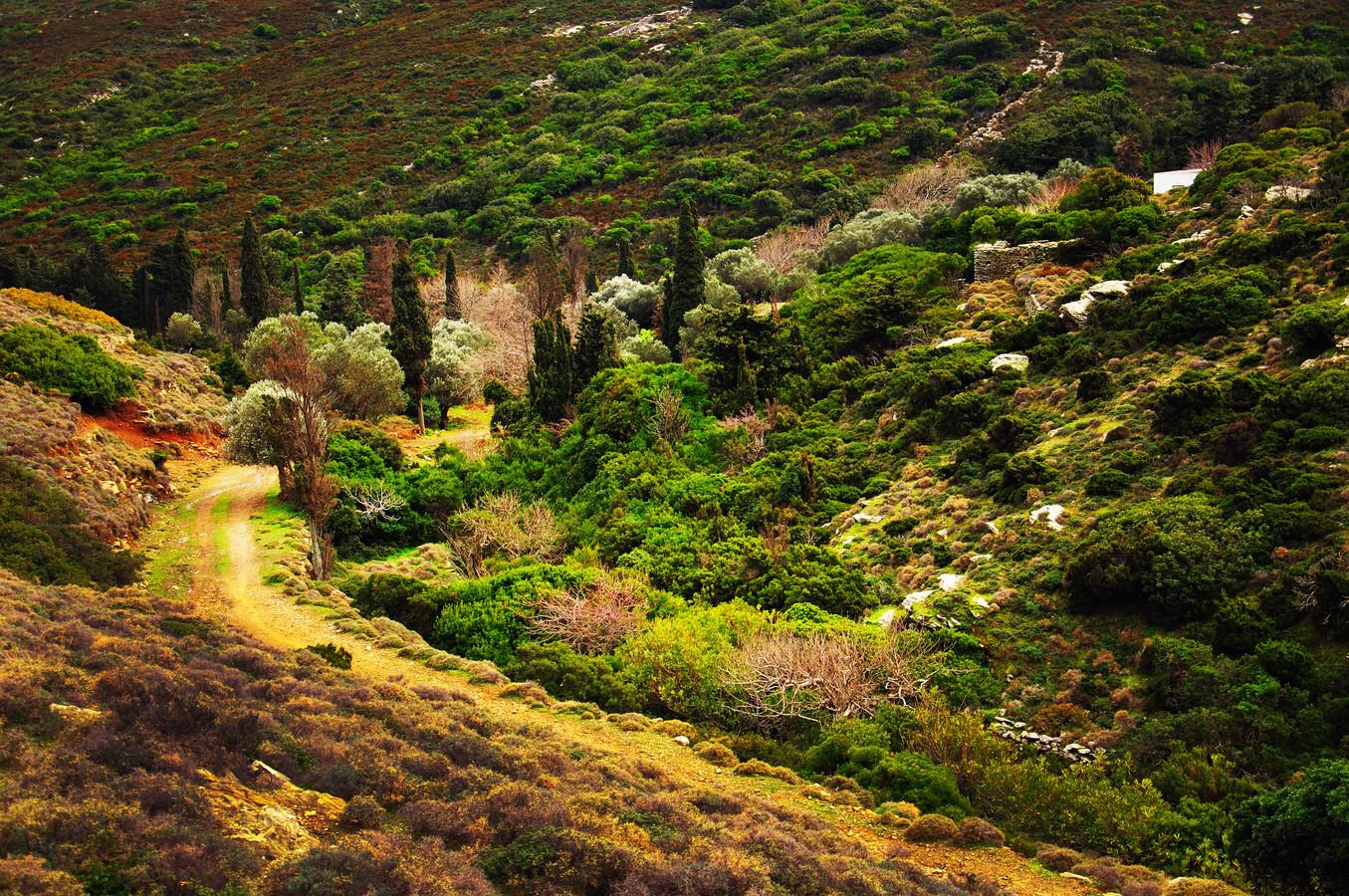 Het Griekse eiland Andros