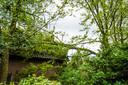 Een grote tak kwam dinsdagmiddag op een woning terecht in Oirschot en beschadigde daarbij het dak.