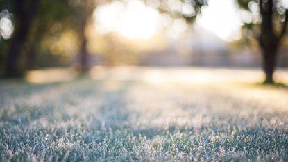 Vorst is in het land: pas op voor aanvriezende mist en mogelijk gladde wegen