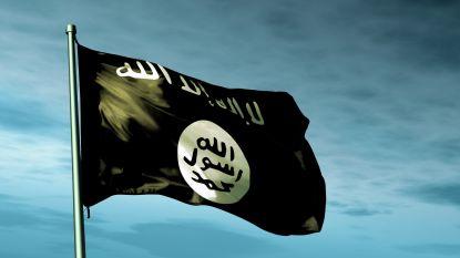 Veiligheidstroepen doden 12 terreurverdachten in Sinaï
