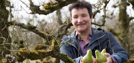 Eetbaar-Olst Wijhe verwacht stormloop op perenboompjes: 'Ik heb veel mensen moeten teleurstellen'