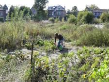 Hoek Kalverstraat in Goirle blijft bron voor gekibbel