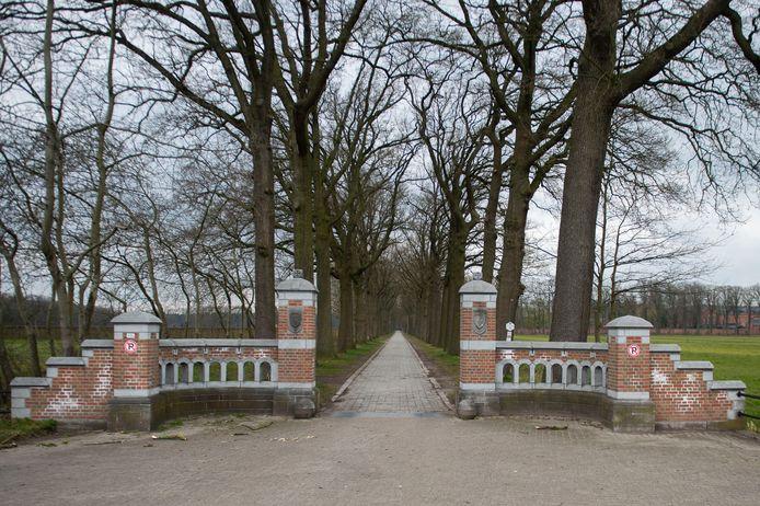 Malle in tijden van corona. Antwerpsesteenweg aan Abdij Der Trappisten van Westmalle.