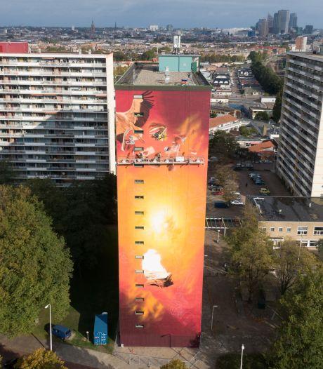 Op flat in Moerwijk komt hoogste muurschildering van het land: 'Had in het begin wel last van hoogtevrees'