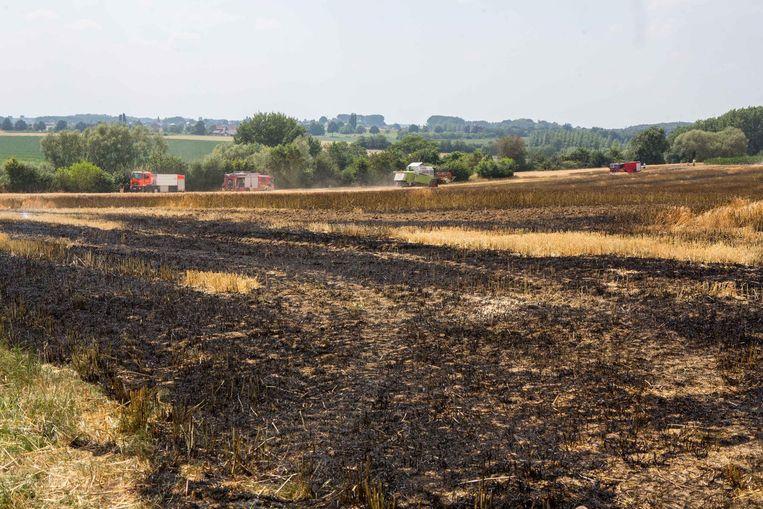 Het zwartgeblakerde veld op de hoek van de Lenniksesteenweg en de Scheyssingen.