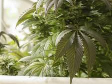 Burgemeester Van der Hoek sluit twee drugspanden in Zierikzee