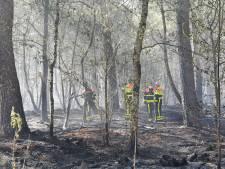'Vuur kan opnieuw oplaaien in gortdroog natuurgebied Moergestel', brandweer houdt grond met man en macht nat