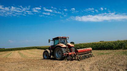 """Landbouw vreest voor droogte: """"Situatie nog niet dramatisch, maar we hopen hard op regen"""""""