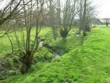"""""""Tegen 2040 klimaatneutraal"""": Oost-Vlaanderen schaaft tien jaar van de klimaatdoelstellingen"""