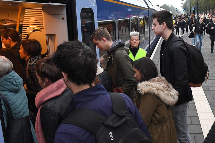 Instaphulpen in gele hesjes van vervoerder Arriva helpen de vele reizigers op de Maaslijn dit najaar, zoals hier op station Boxmeer, met vlotjes instappen, zodat treinen minder vertraging oplopen.