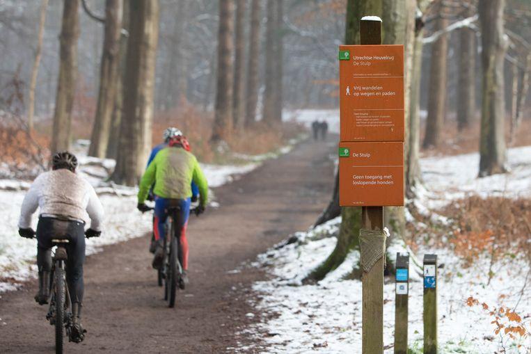 Veel wandelpaden in Nederland zijn gemaakt van zogeheten recyclingsgranulaat. Dat bestaat voornamelijk uit steen en beton, maar wordt niet helemaal gefilterd van stoffen als plastic, rubber en metaal. Beeld Caspar Huurdeman