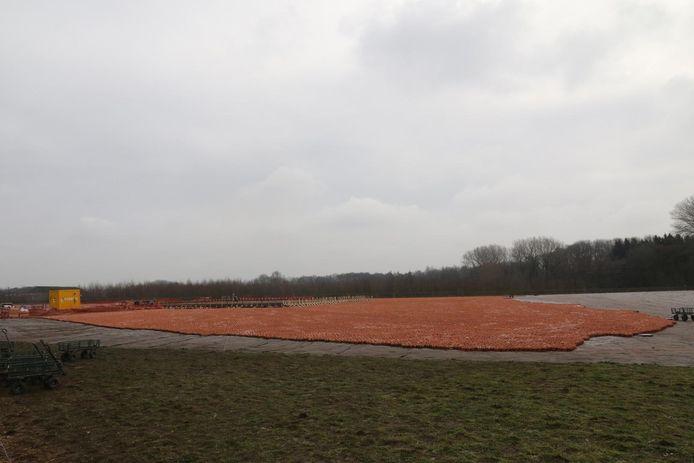 In totaal staan er nu al 200.000 beeldjes in De Palingbeek.